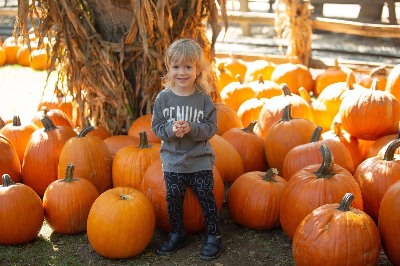 Pumpkin Farm Los Angeles